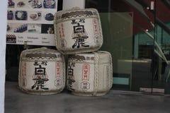 Stort förpacka för träd av isolerat gammalt porslinte Puer Arkivbild
