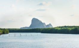 Stort flodberg Royaltyfri Foto