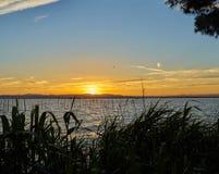 Stort format i panorama- solnedgång för hög upplösning i Albuferaen av Valencia spain arkivfoton
