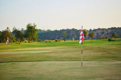 Stort golfefält i Portugal Royaltyfri Bild