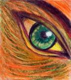 Stort grönt öga på den orange framsidan Fotografering för Bildbyråer