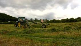 Stort grönt traktorplockninggräs, lastbil med hötillverkaren som arbetar på ängen i jordbruksmark lager videofilmer