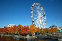 Stort hjul av den Montreal staden i Kanada royaltyfria foton