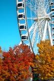Stort hjul av Montreal under nedgångsäsong royaltyfria bilder