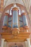 Stort holländskt brunt organ Royaltyfri Bild