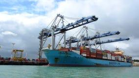 Stort lastfartyg som lastar av behållare i portar av Auckland Nya Zeeland stock video