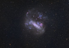 stort magellanic för oklarhet Royaltyfri Fotografi