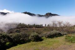 Stort moln i bergen av Gran Canaria Royaltyfri Bild