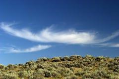 stort oklarhetsland fluffiga montana över skywhite arkivbilder