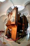 stort organ Arkivbild