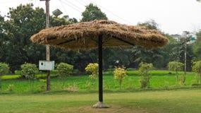 Stort paraply i frodig gräsplanträdgård Royaltyfri Foto