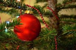 Stort rött jordklot på julgranen Arkivbilder