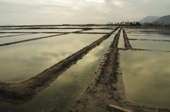 Stort salta fältet i Cambodja Arkivbild