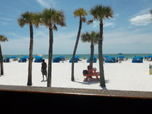 Stort skott av stranden med palmträd och Cabanas Arkivbilder
