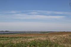 Stort sol- brukar ut på plan jordbruksmark i västra Oklahoma under blå himmel royaltyfri fotografi