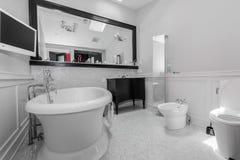 Stort stilfullt klassiskt badrum royaltyfria bilder