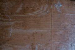 stort texturtreeträ Royaltyfria Bilder