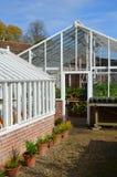 Stort trädgårds- grönt hus Royaltyfria Foton