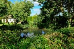 Stort utsmyckat damm som ses inom en stor trädgård Bakgrunden visar delen av ett uthus som används som ett privat kontor royaltyfri fotografi