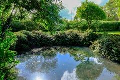 Stort utsmyckat damm som ses inom en stor, väl underhållen kvalitet som visar sommarhimmelreflexionen på vattnet royaltyfri fotografi