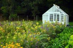 stort växthus Arkivfoton