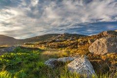 Stort vaggar över ett guld- dramatiskt landskap Västra öar, S Arkivfoton