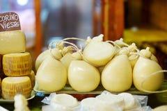 Stort val av ostar på italiensk bondemarknad Fotografering för Bildbyråer
