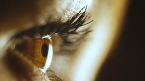 stort vatten för fotografi för makro för droppgreenleaf Ögat av en kvinna som ser minnestavlan lager videofilmer