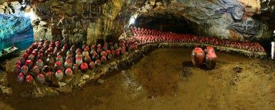 Stort vin skorrar i grottan Royaltyfri Fotografi