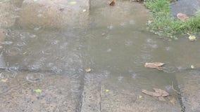 Stortbui, regen die in een vulklei op het voetpad vallen stock footage