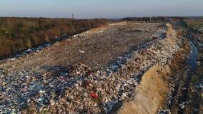Stortplaatsen die het milieu verontreinigen Vernietiging van het ecosysteem Hongerige vogels stock video