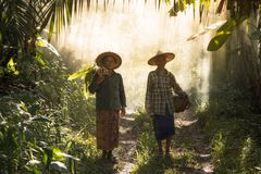 The story of rural people way of life. Stock Photography