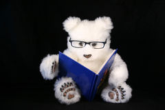 Story time. Teddy bear wearing glasses reading a book Royalty Free Stock Photography