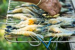 Stos świeża surowa krewetka przygotowywa dla grilla fotografia royalty free