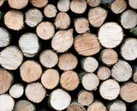 Stos świeże rżnięte drewno bele Obraz Stock