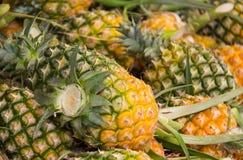 Stos ananasy Zdjęcia Stock