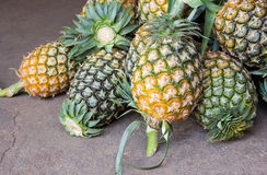 Stos ananasy Obrazy Royalty Free