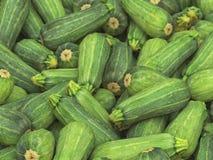 Stos Długi Zucchini Obrazy Stock