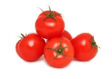 Stos dojrzali pomidory (odizolowywający) Zdjęcia Stock