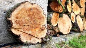 Stos drewna w domowym magazynie zbiory wideo