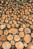 Stos drewna w domowym magazynie Obrazy Royalty Free