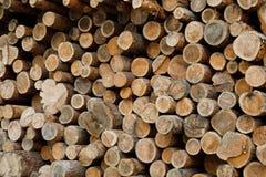 Stos drewniane bele Lasowy wyróbki miejsce Powalać drzewni bagażniki Obrazy Stock