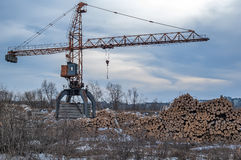Stos drewno bele z żurawiem Tyumen Rosja Zdjęcie Stock