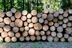 Stos drewno notuje gotowego dla zimy. Obraz Stock