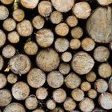 Stos drewno notuje gotowego dla zimy. Zdjęcie Royalty Free