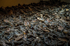 Stos holokaustów buty Obrazy Royalty Free