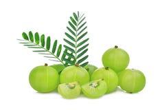 Stos indyjska agrestowa owoc z zieleń liśćmi odizolowywającymi Zdjęcie Stock