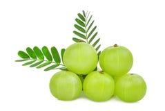 Stos indyjska agrestowa owoc z zieleń liśćmi odizolowywającymi Fotografia Stock