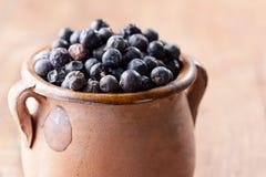 Stos jałowcowe jagody na ceramicznym pucharze Zdjęcia Royalty Free