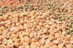 Stos odrzucać kokosowe plewy fotografia royalty free